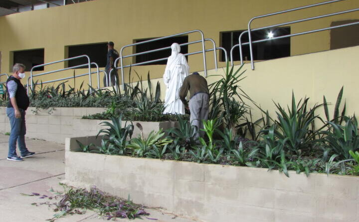 Canteiros no entorno da Prefeitura são renovados